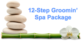 12-Step Spa Package Puppy Grooming