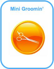 Mini Grooming
