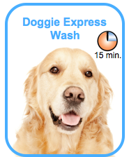 Doggie Express Wash