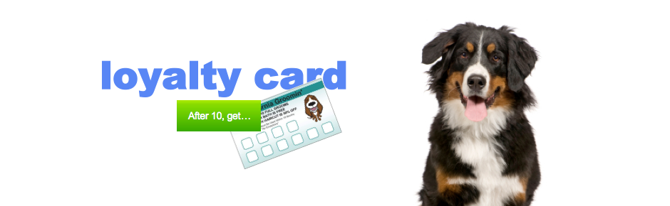 Loyalty Card Dog Grooming