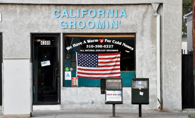 California Groomin Dog Grooming