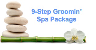 9-Step Groomin' Spa Package